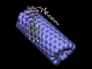 A Nano Crab on a Nanotube